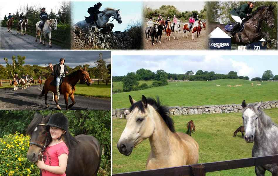 Collage Horseriding